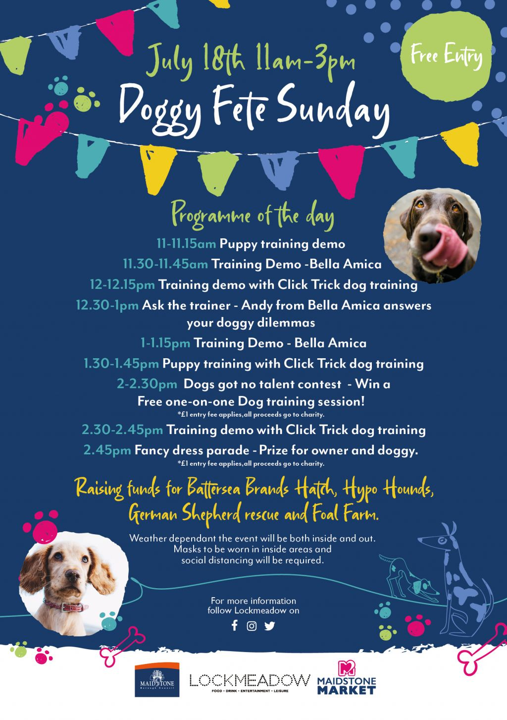 It's a Dog's Life at Lockmeadow first Doggy Funday  image