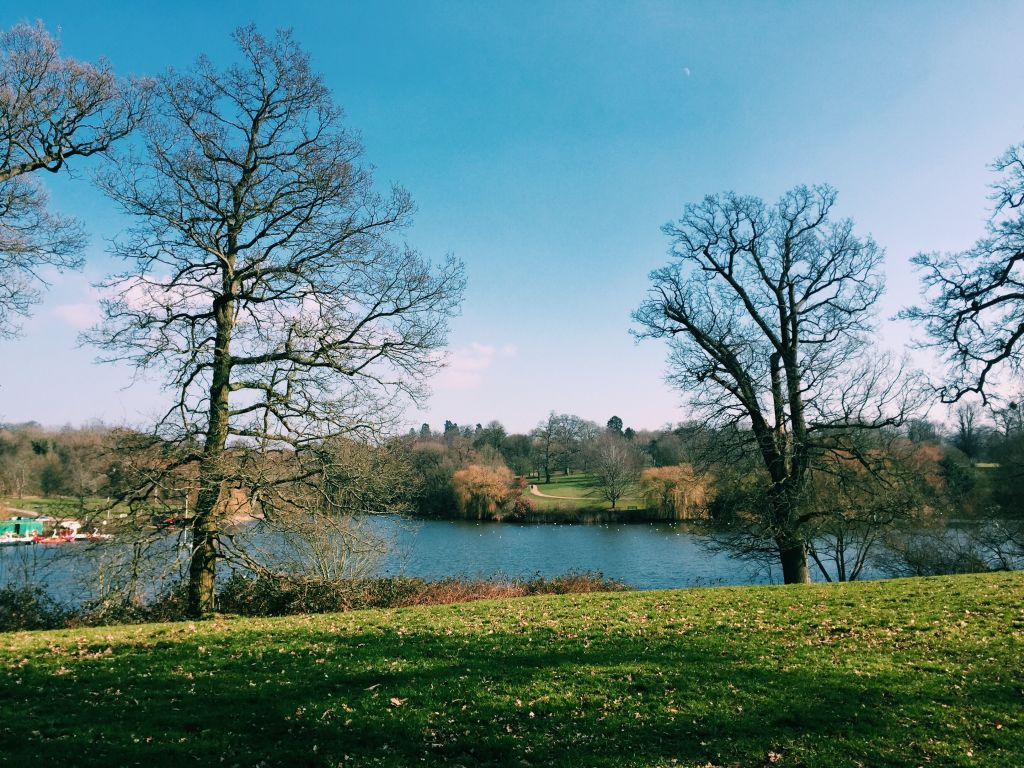 Take a walk in Mote Park for National Walking Month image