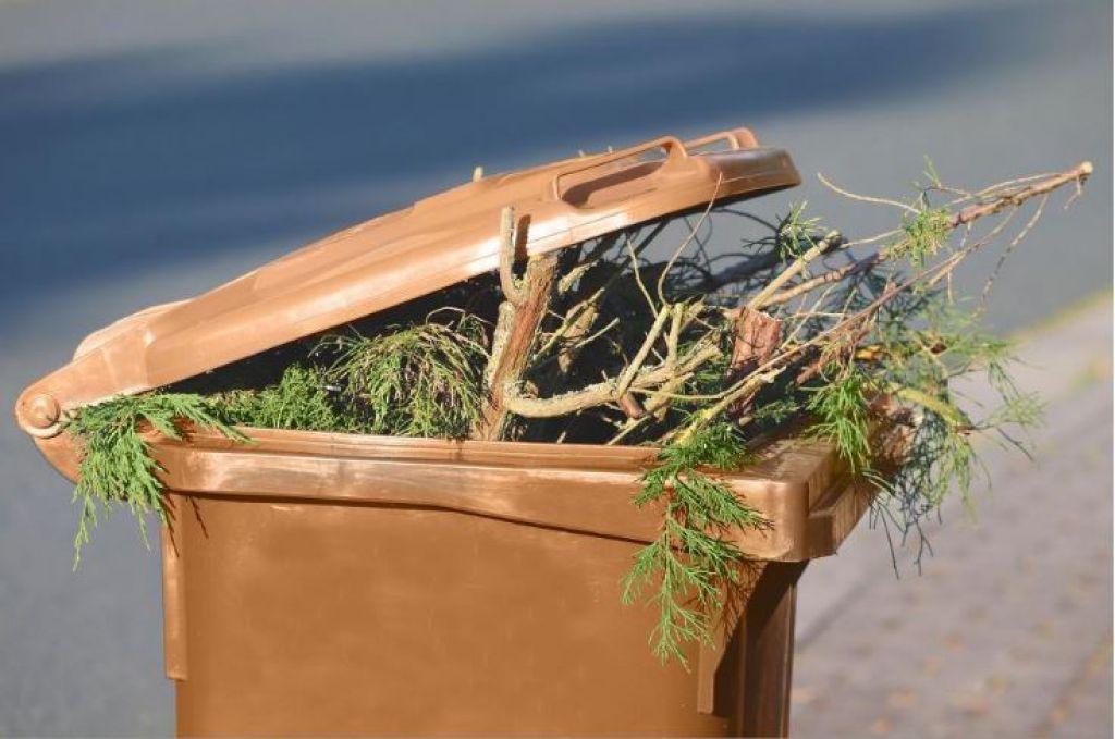 Get a garden waste bin for £45 a year